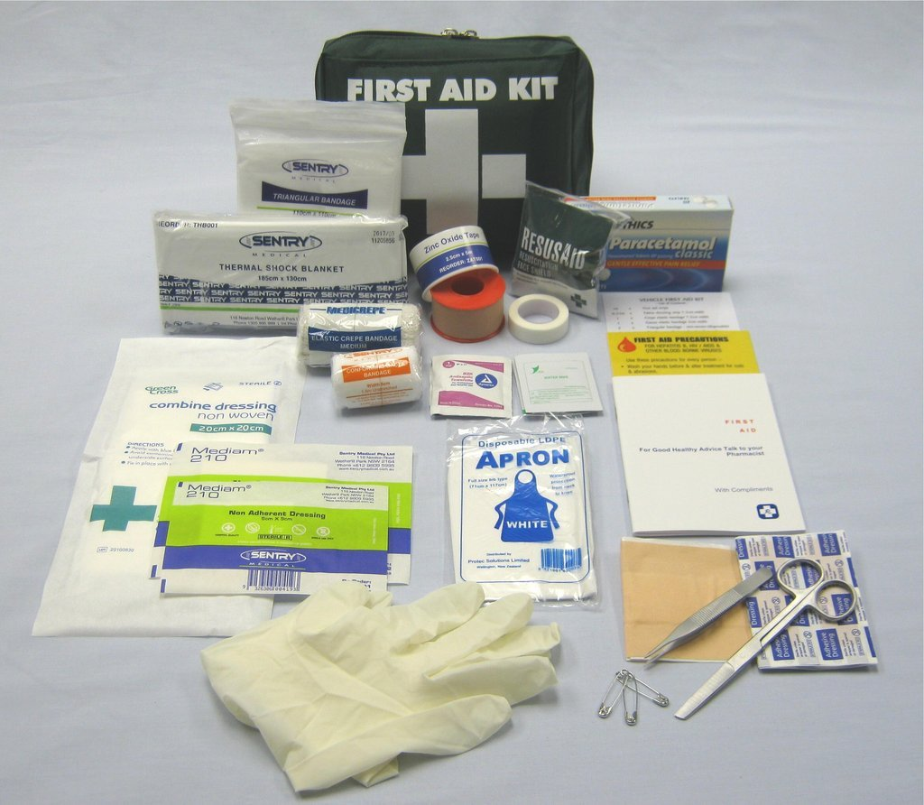 Vehicle/Lone Worker First Aid Kit (Small Bag)
